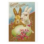 Vintage de los saludos de Pascua del conejo Tarjeta Postal