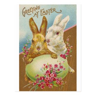Vintage de los saludos de Pascua del conejo Postales
