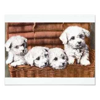 Vintage de Puppies* del *Cute Invitación 10,8 X 13,9 Cm