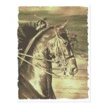 Vintage de Saddlebred del americano falso Tarjeta Postal