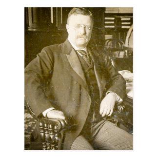 Vintage de Teddy Roosevelt de los alces de Bull Tarjeta Postal