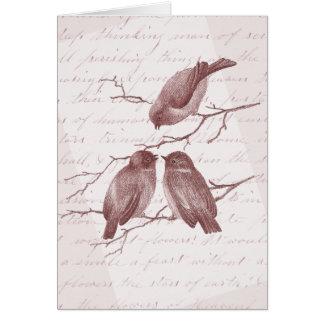 Vintage de tres el pequeño pájaros le agradece las tarjeta pequeña