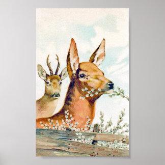 Vintage Deer Poster