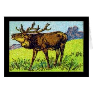 Vintage Deer Print Card
