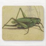 Vintage del grillo del insecto alfombrillas de raton