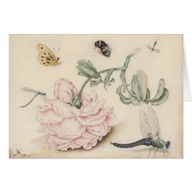 Vintage design with a pale pink rose and insects