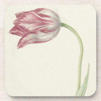 Vintage design with a pink and white tulip coaster