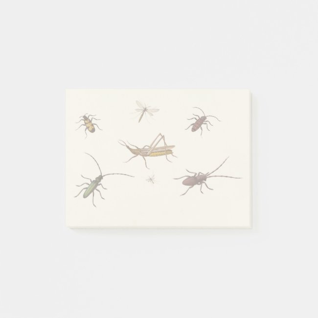 Vintage design with seven different insects