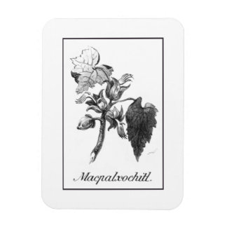 Vintage Devil's hand tree etching magnet