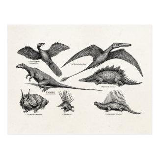 Vintage Dinosaur Illustration Retro Dinosaurs Postcard
