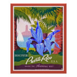 Vintage Discover Puerto Rico Poster Print