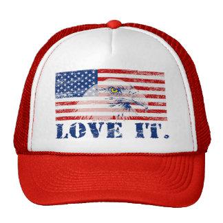 Vintage Distressed US Flag & Eagle LOVE IT Hat