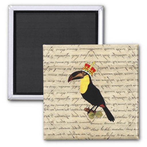 Vintage divertido toucan y corona iman