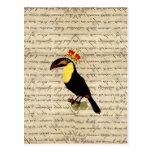 Vintage divertido toucan y corona postal