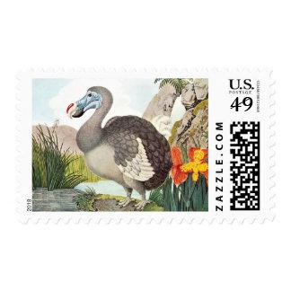 Vintage Dodo Bird Art Postage Stamps