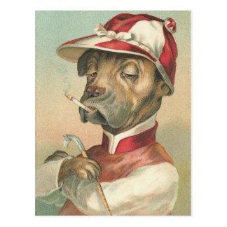 Vintage Dog Jockey Postcard