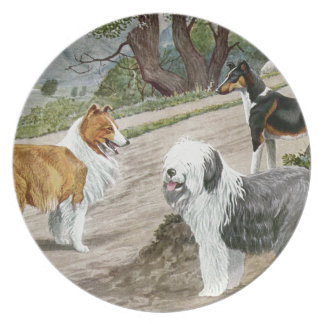 Vintage Dog Lovers Art Collie Trio Party Plate