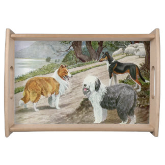 Vintage Dog Lovers Art Collie Trio Service Trays