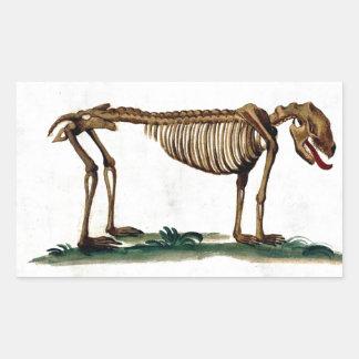 Vintage Dog Skeleton Rectangular Sticker