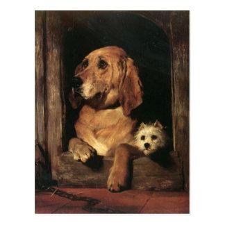 Vintage Dogs Best Friends Postcard