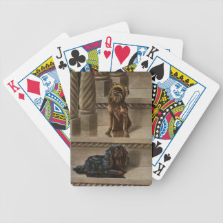 Vintage Dogs Sitting on a Staircase Bicycle Playing Cards