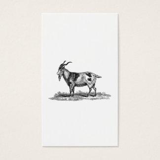 Vintage Domestic Goat Illustration -1800's Goats Business Card