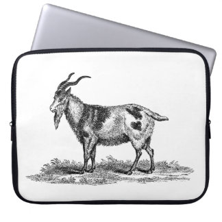 Vintage Domestic Goat Illustration - 1800's Goats Computer Sleeve