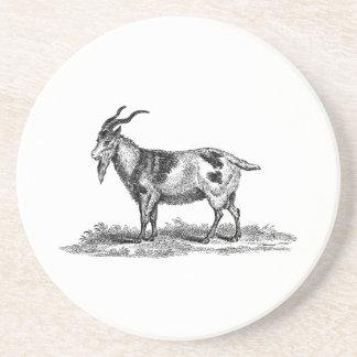 Vintage Domestic Goat Illustration -1800's Goats Drink Coaster