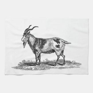 Vintage Domestic Goat Illustration -1800's Goats Hand Towels