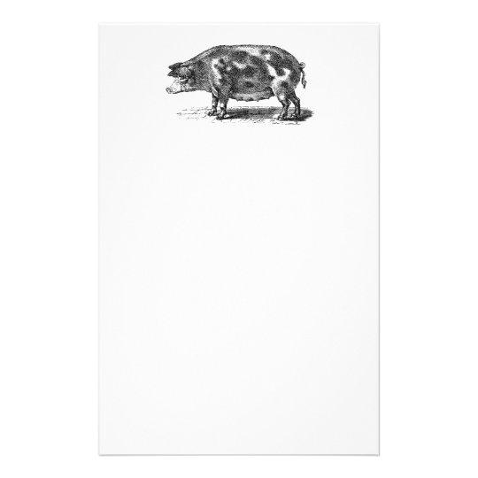 Vintage Domestic Hog Illustration - 1800's Pig Stationery
