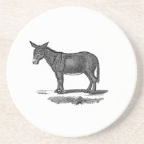 Vintage Donkey Illustration - 1800's Donkeys Drink Coaster