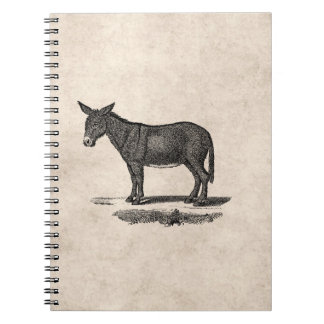 Vintage Donkey Illustration - 1800's Donkeys Notebook
