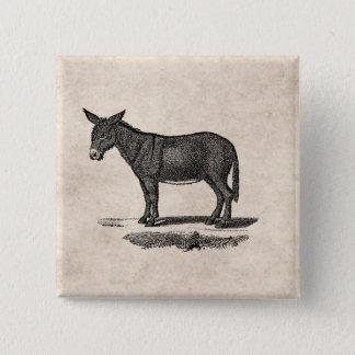 Vintage Donkey Illustration -1800's Donkeys Pinback Button