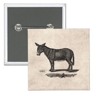 Vintage Donkey Illustration - 1800's Donkeys Pinback Button