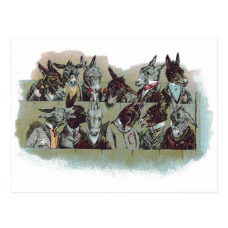 Vintage Donkey Jurists Postcard