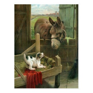 Vintage Donkey & Puppy Dog in Manger Old Barnyard Postcard