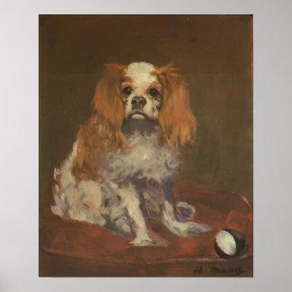 "Vintage Dop Print ""A King Charles Spaniel"""