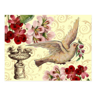 Vintage Dove & Birdbath Postcard