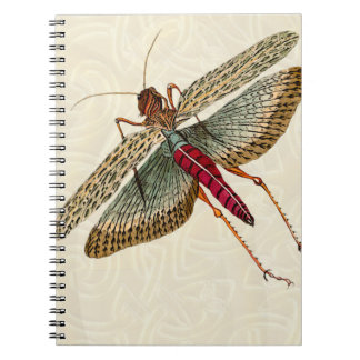 Vintage Dragon Fly Painting & Celtic Knot Notebook
