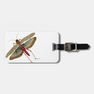Vintage Dragon Fly Painting Luggage Tag