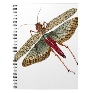 Vintage Dragon Fly Painting Notebook