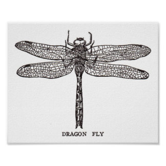 Vintage Dragon Fly Poster