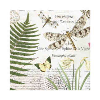 Vintage Dragonflies stretched canvas