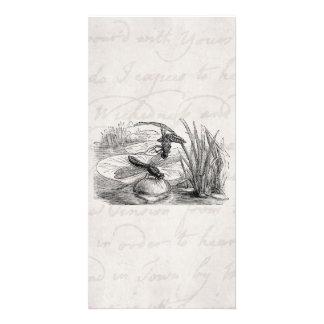 Vintage Dragonfly Antique Dragonflies Parchment Card