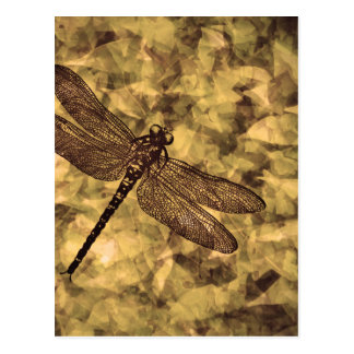 Vintage Dragonfly Art Postcard