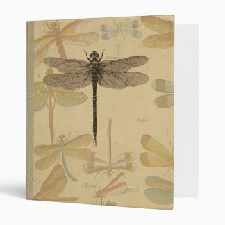 Vintage dragonfly drawing binder