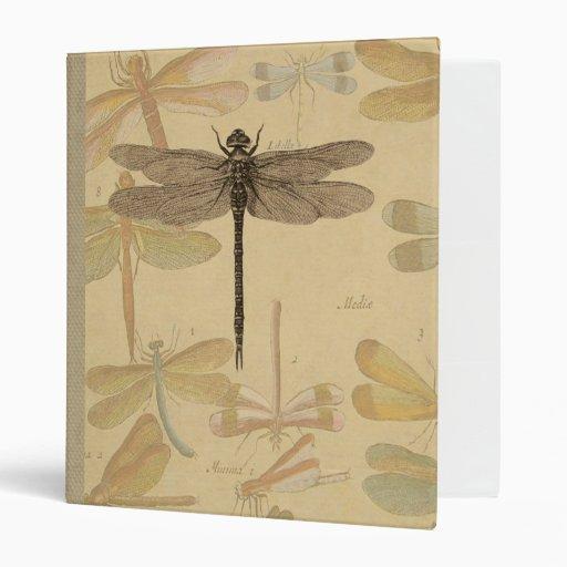 Vintage dragonfly drawing vinyl binders