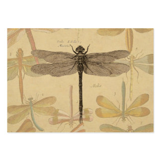 Vintage dragonfly drawing large business cards (Pack of 100)