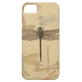Vintage dragonfly drawing iPhone 5 cover