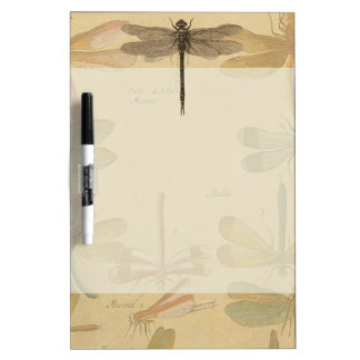 Vintage dragonfly drawing Dry-Erase boards